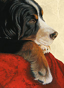 Acrylic Dog Paintings - Slumber by Liane Weyers