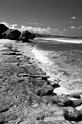 Antilles Prints - Small Barbados Waves BW Print by Darcy Michaelchuk