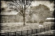 Small Farm In West Virginia Print by Dan Friend