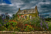 Degustation Framed Prints - Small house in Sancerre Framed Print by Oleg Koryagin