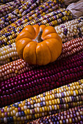 Kernels Posters - Small pumpkin and Indian corn Poster by Garry Gay