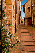 Todd Hanes - Small street in Assisi