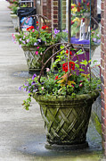 Baskets Framed Prints - Small Town Sidewalk Framed Print by Carolyn Marshall