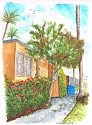 Urban Watercolour Framed Prints - Small trees in Homewood Ave - Hollywood - California Framed Print by Carlos G Groppa