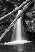Gaspar Avila Framed Prints - Small waterfall Framed Print by Gaspar Avila