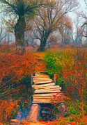 Sasa Prudkov - Small wooden bridge in...