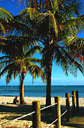 Beaches In Florida Prints - Smathers Beach in Key West Print by Susanne Van Hulst