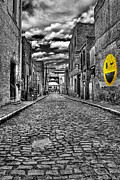 Cobblestone Prints - Smiling At You Print by Tim Wilson