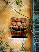 Lainie Wrightson - Smiling Cat Mail Box