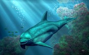Aquatic Life Art - Smiling Dolphin by Daniel Eskridge