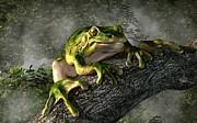 Daniel Eskridge - Smiling Frog