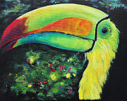 Toucan Originals - Smiling Toucan by Tom Applegate