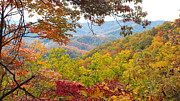 Cindy Croal - Smokey Mountain Autumn