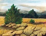Jim Phillips - Smokey Mountain Field