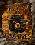 Wildfires Framed Prints - Smokey The Bear - Only You Can Prevent Wild Fires Framed Print by John Stephens