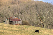 Tin Roof Prints - Smoky Mountain Barn 10 Print by Douglas Barnett