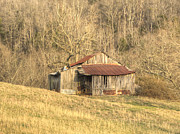 Tin Roof Prints - Smoky Mountain Barn 11 Print by Douglas Barnett