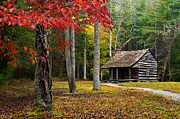 Log Cabin Art Posters - Smoky Mountain Cabin Poster by Eric Albright