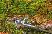 Gatlinburg Tennessee Prints - Smoky Mountain Creek in Fall Print by Zane Kuhle