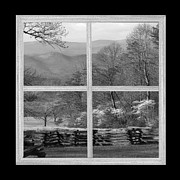 Cabin Window Posters - Smoky Mountain Dogwoods Poster by TnBackroads Photography