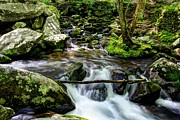 Roaring Fork Prints - Smoky Mountain Stream 4 Print by Mel Steinhauer