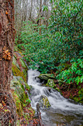 Pigeon Forge Photos - Smoky Mountain Stream by Mark Bowmer