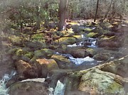 Philip White - Smoky Mountain Stream W