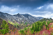 Mary Almond - Smoky Mountains