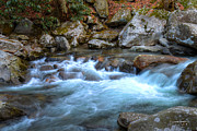 Greg Weseman - Smoky Mountains Stream