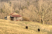 Tennessee Barn Prints - Smoky Mountian Barn 7 Print by Douglas Barnett