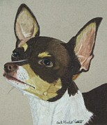 Anita Putman - Smooth Coated Chihuahua