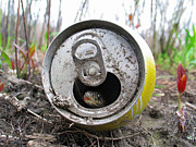 Pop Can Photos - Snake In A Can by Colin Thomas