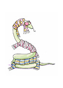 Green Drawings Posters - Snake Wearing a Scarf Poster by Christy Beckwith