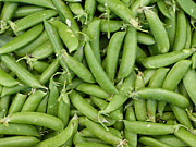 Farm Stand Art - Snappy peas by Susan Colby