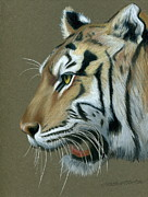 The Tiger Drawings - Snarl by Heather Mitchell