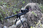 Scrutiny Photos - Sniper Dressed In A Ghillie Suit by Stocktrek Images