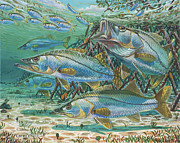 Tropical Wildlife Paintings - Snook attack by Carey Chen