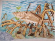 Blue Watercolor Pyrography Prints - Snook Original Pyrographic Art on Paper by Pigatopia Print by Shannon Ivins