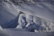 Snow Drifts Photos - Snow Art by Valarie Davis