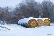 Bales Paintings - Snow Bales by Bethany Caskey