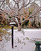 Jeff McJunkin - Snow Bell 2014