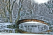 Snow Storm Prints Framed Prints - Snow Bridge Framed Print by Rebecca Adams