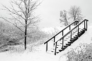 Overcast Day Digital Art Posters - Snow Cover Stairs Poster by Crystal Wightman