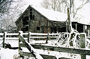 Snow Covered Barn Print by Kimberleigh Ladd