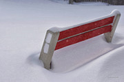 Snow Covered Bench Print by Thomas Woolworth