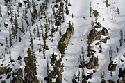 Snow-covered Canyon Walls In Yellowstone National Park Print by Bruce Gourley