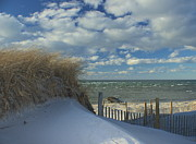 Amazing Jules - Snow Covered Dunes