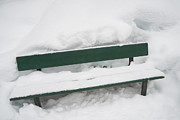 Lots Of Snow Prints - Snow-covered green bench in winter with lots of snow Print by Matthias Hauser