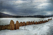 Snow Scene Framed Prints - Snow Covered Hay Bales Framed Print by Kathy Jennings