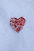 Red Heart Art - Snow-covered Heart by Joana Kruse